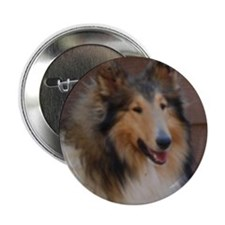 """Honeytree Collies in Texas 2.25"""" Button (10 p"""