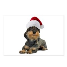 Wirehaired Dachshund Christmas Postcards (Package