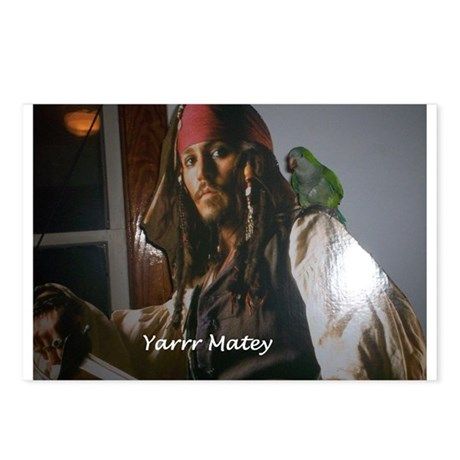 Peter the Quaker Parrot Yarr Postcards (Package of