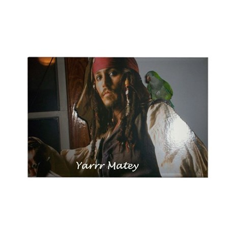 Peter the Quaker Parrot Yarr Rectangle Magnet (10