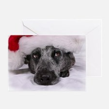 Christmas Blue Heeler Greeting Card
