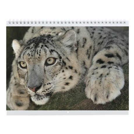 12 Big Cats On A Wall Calendar