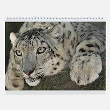 12 Big Cats On A Wall Calendar