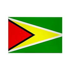 Simple Guyana Flag Rectangle Magnet