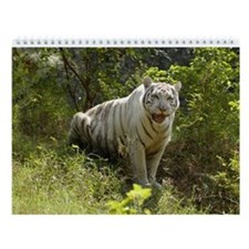White Tiger, Zabu Wall Calendar