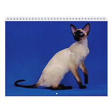 Wall Calendar - Beautiful Siamese Cats