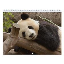 Giant Panda 2 Wall Calendar