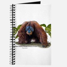 Sumatran Orangutan Journal
