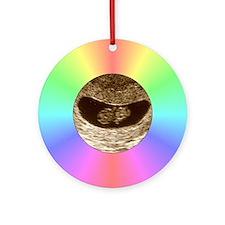 Rainbow Christmas Ultrasound Ornament (Round)
