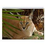 Caracal Lynx Wall Calendar