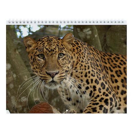 Leopards Wall Calendar