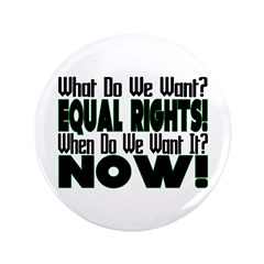 "Equal Rights Now 3.5"" Button"