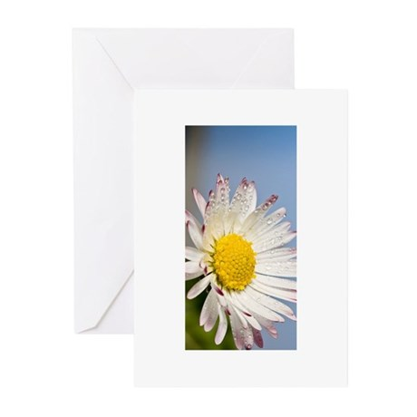 flower daisy Greeting Cards (Pk of 10)