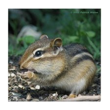 Funny Chipmunk Tile Coaster