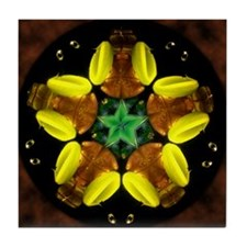 Green Star Kaleidoscope Tile Coaster