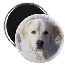 The Great Great Pyrenees - Magnet