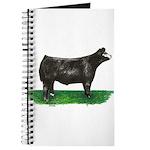 Baldie Steer Journal