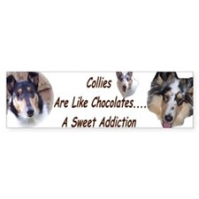 Collies Bumper Bumper Bumper Sticker