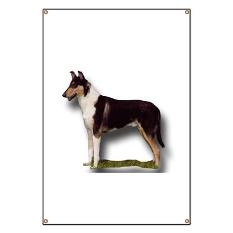 Collies Banner