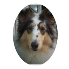 Collies Oval Ornament
