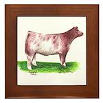 Shorthorn Steer Framed Tile