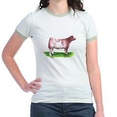 Shorthorn Steer T