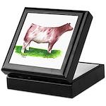 Shorthorn Steer Keepsake Box