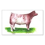 Shorthorn Steer Rectangle Sticker