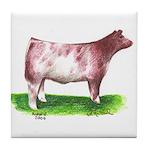 Shorthorn Steer Tile Coaster