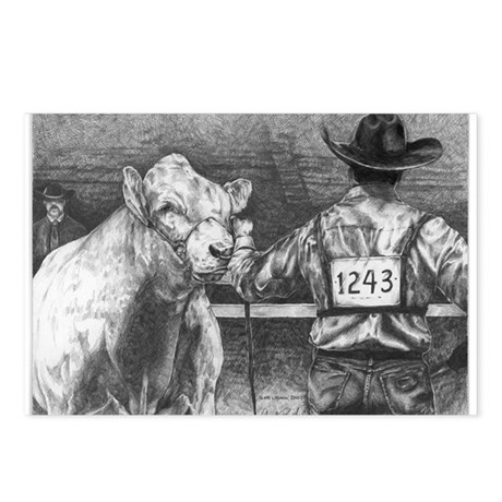 """""""Is He Lookin' Charolais Postcards (Package of 8)"""