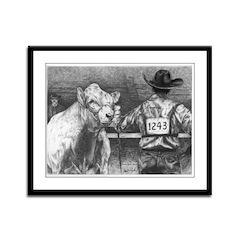 """Is He Lookin' Charolais Framed Panel Print"
