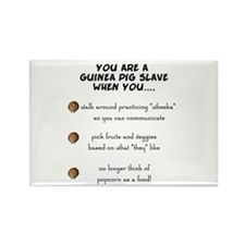 Guinea Pig Slave Rectangle Magnet