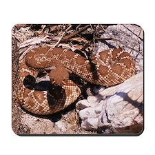 Desert Rattlesnake Mousepad