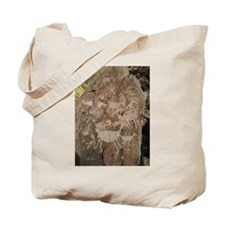 Desert Rock Art Tote Bag