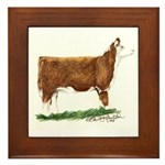 Hereford Heifer Framed Tile