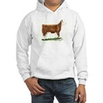 Hereford Heifer Hooded Sweatshirt