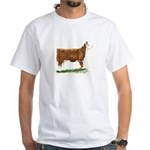 Hereford Heifer White T-Shirt