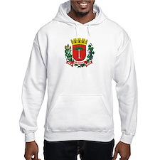 Cute Brazil coat of arms Hoodie