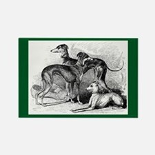Three Hounds Rectangle Magnet