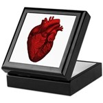 Vintage Anatomical Human Heart Keepsake Box