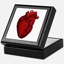 Vintage Anatomical Human Heart Keepsake Box
