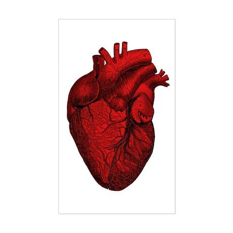 Vintage Anatomical Human Heart Rectangle Sticker