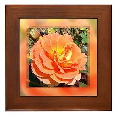 Autumn Rose Framed Tile