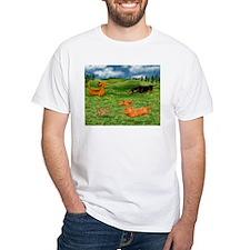 Perfect Dog Day Shirt