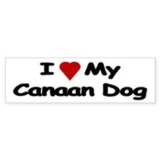 Love My Canaan Dog Bumper Bumper Stickers Bumper Sticker