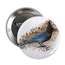 "Steller's Jay 2.25"" Button (10 pack)"