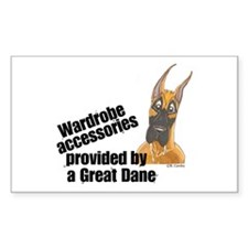 Drooly CF Wardrobe Rectangle Decal