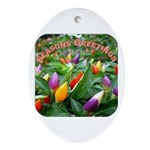 Pepper Christmas Lights Oval Ornament
