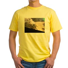 evergreen toad T