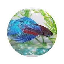 Cute Betta Ornament (Round)